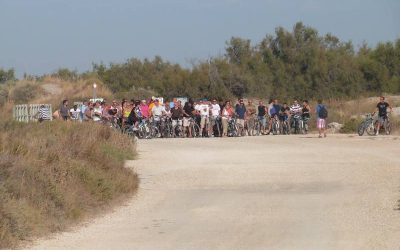 Location vélo pour groupes